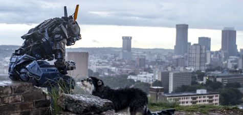 Chappie, a sentient robot, plays with dog overlooking Johannesburg