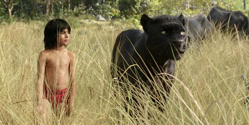 Jungle Book's Neel Sethi and leopard Bagheera (voice Ben Kingsley) walk through high grass