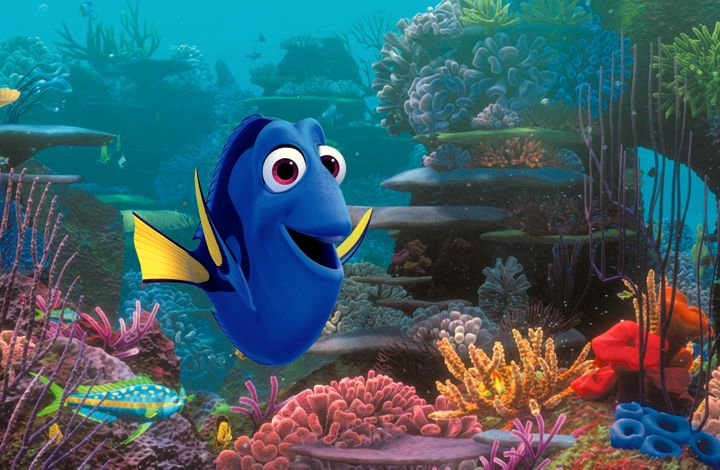 Finding Dory's Dory happily swims over colorful sea bed